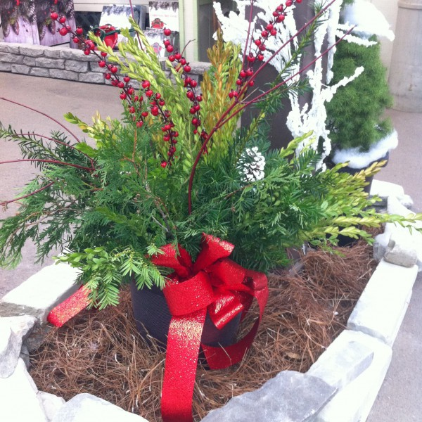 Evergreen Porch Pot