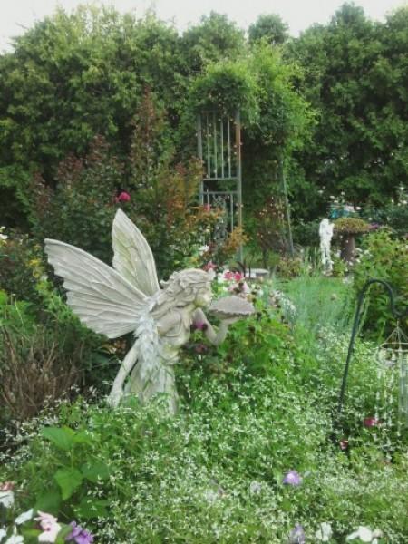 Fairy Moon Garden