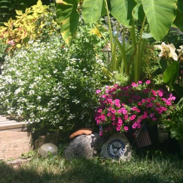 Montgomery County Master Gardener